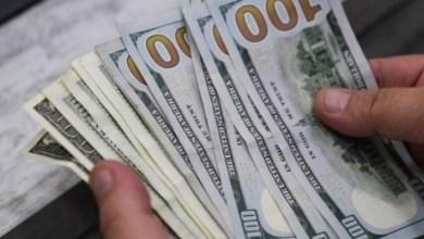 Photo of فتح باب التسجيل لمشروع بمبلغ (4000) دولار من المنحة القطرية 2020