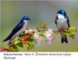Klausimynas-Vyro-ir-Zmonos-emocinis-rysys-Seimoje-II