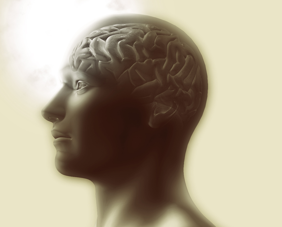 3D render of a medical image showing brain highlighted in a male