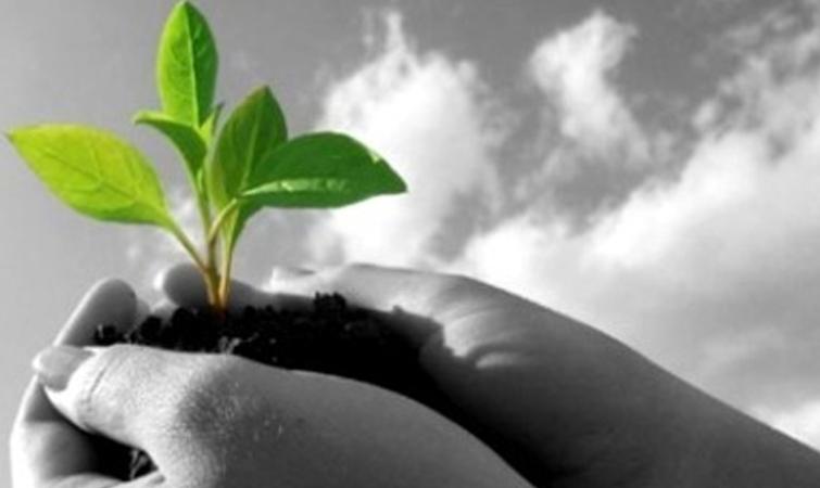 Κοινωνική και Τοπική Ανάπτυξη