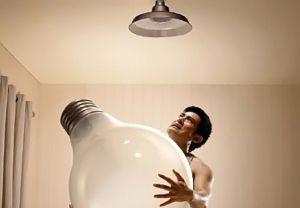 trocar lâmpada - mimados