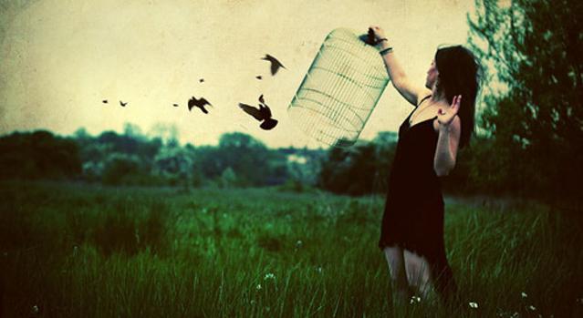 desapegar, abrir a gaiola e soltar os pássaros