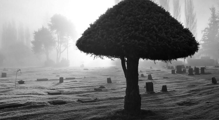 luto, morte, perda, cemitério, caixão, partida, morrer