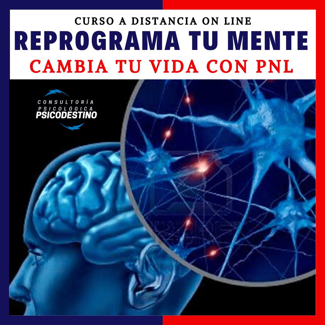 Curso online de PNL