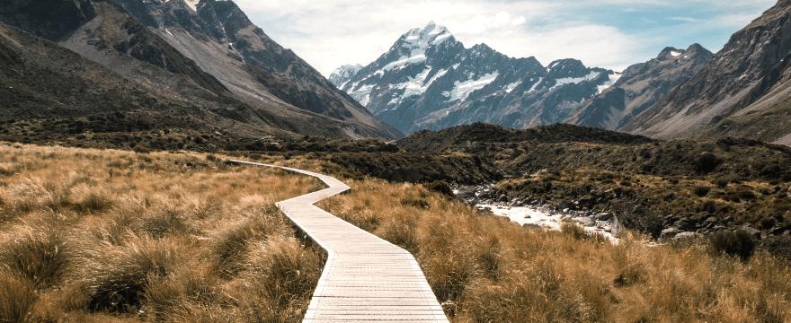 Crea Tu Camino