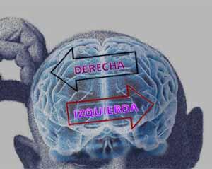 cerebro político