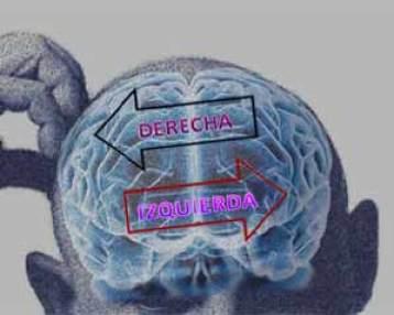 Lo que tu cerebro dice de tus ideas políticas