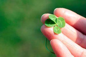 Cómo Crear Buena Fortuna en Tu Vida
