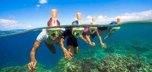 Snorkel para Desconectar