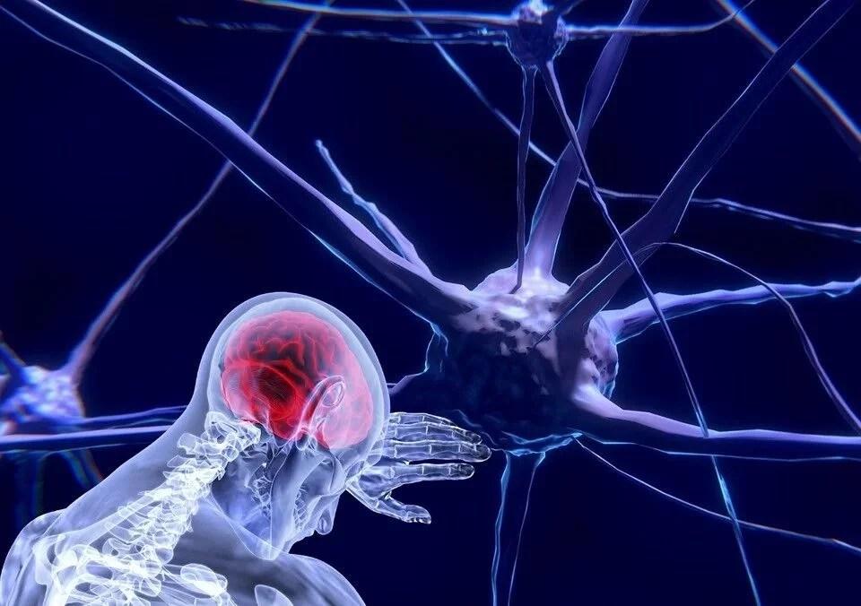 Neurociencia cognitiva social
