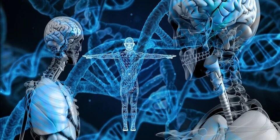 Estudios genéticos de Genius
