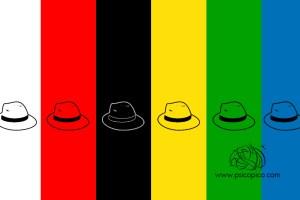 sombreros para pensar de bono