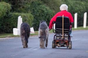 movilidad felicidad