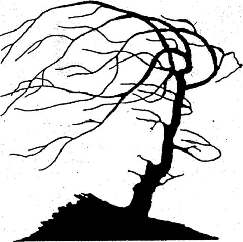 Беседы о гештальте. Перлз (Perls, 1969) 5 уровней невроза в процессе терапии.