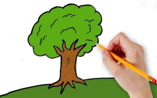 Рисуночный тест «Мое дерево»