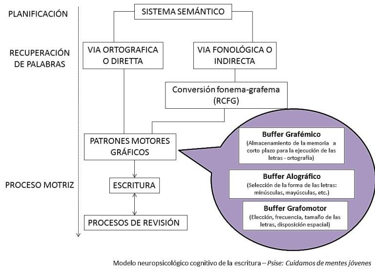 Esquema del modelo neuropsicológico cognitivo de la escritura