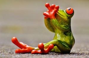 frog-1274754_1920
