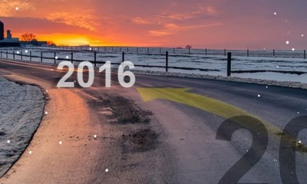 Year in Review and Goals for 2016
