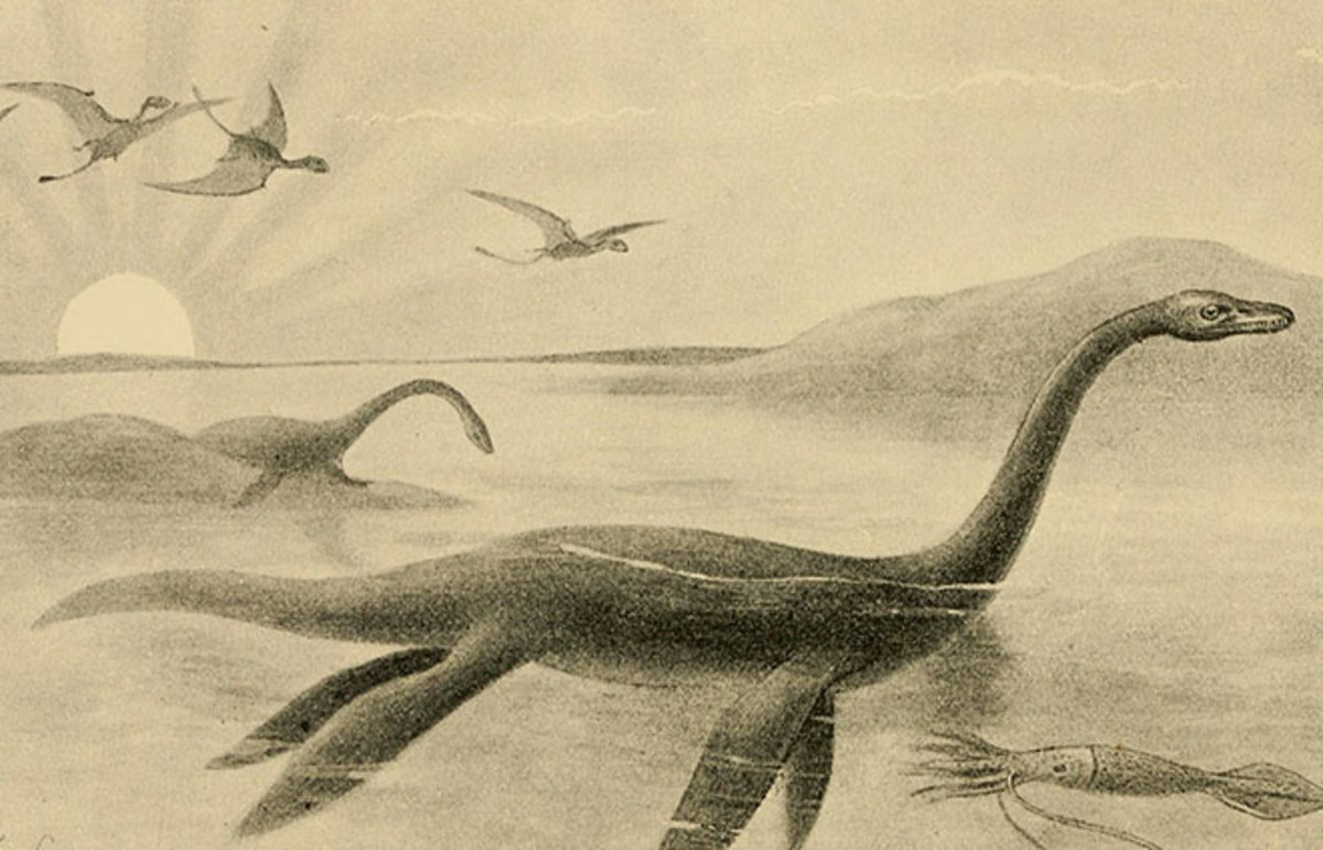 A Brief History Of The Loch Ness Monster