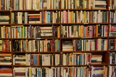 A look at books on a shelf in a library