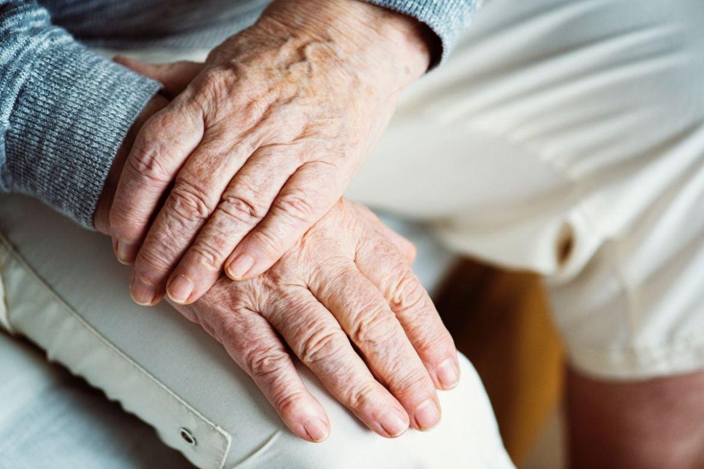 Older people working with older people