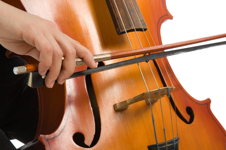 Sekcja wiolonczeli