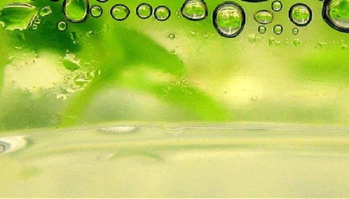 Call for papers: Biofuel production from microbes