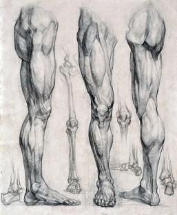 jambe