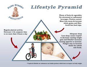 Lifestyle Pyramid REV