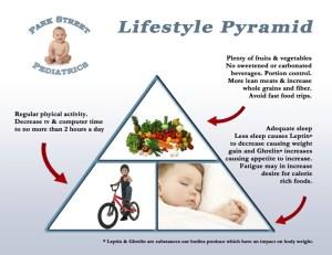 Lifestyle Pyramid REV