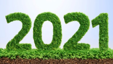 Photo of The top green resolutions to make for 2021