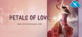 Petals of Love Photoshop Manipulation