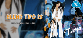 Blend Tipo 13