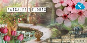 paisajes y flores de pascua