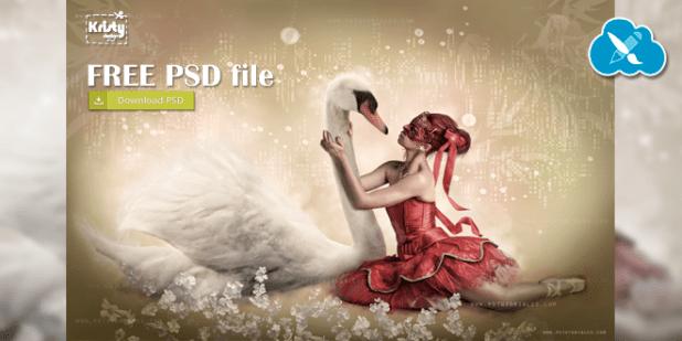 Free PSD File - Cisne