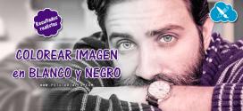 Colorear imagen con resultados realistas en Photoshop