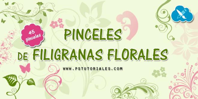 45 pinceles de filigranas florales