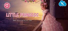 Little Princess Speed Art Photoshop