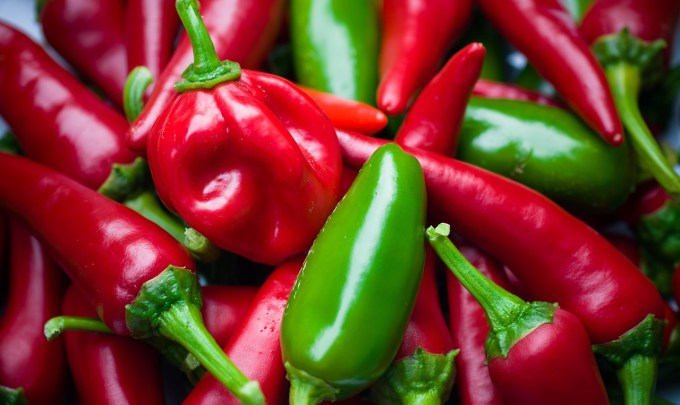 Hot Chili Peppers: A Possible New Cure for Obesity