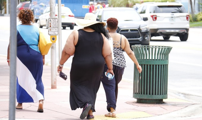 Why Obesity Is Still a Problem and How the Gut Microbiome Factors in
