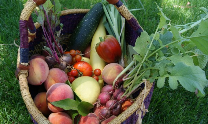 Eliminating Food Waste by Keeping Your Produce Fresh