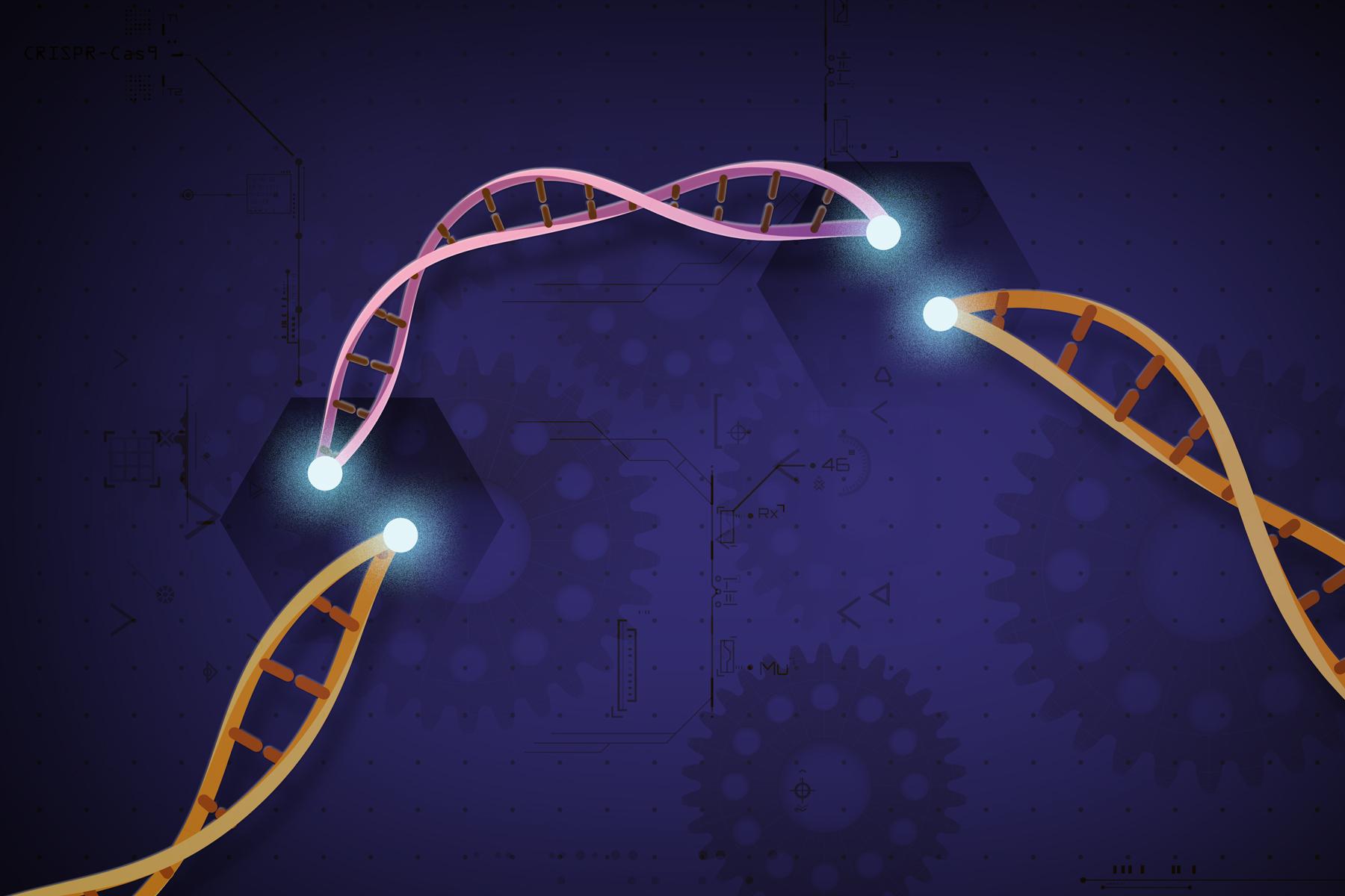 Top CRISPR breakthroughs in 2019