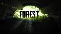 The Forest is Coming to PS4 and Wasn't too Much Hassle