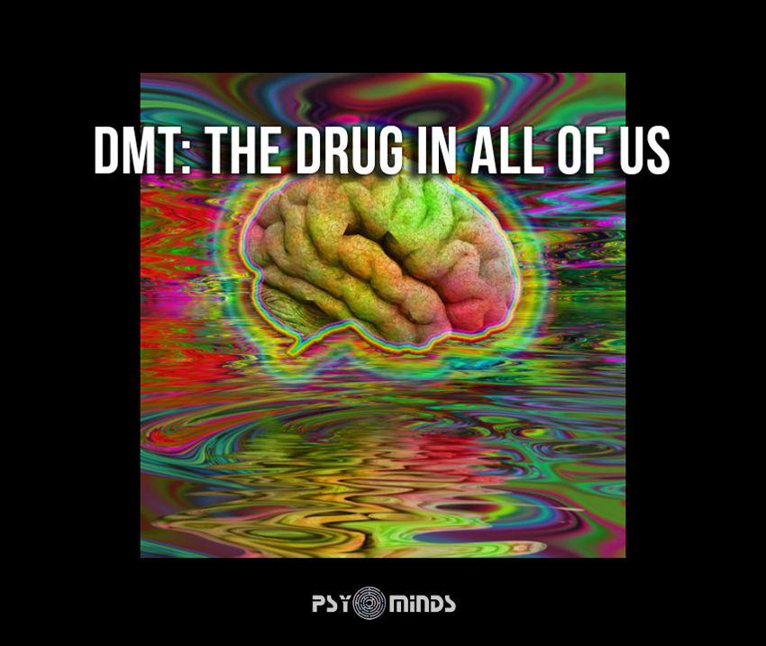 DMT Drug