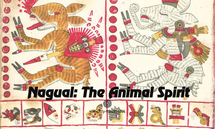 Nagual: The Animal Spirit