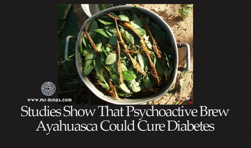 Studies Show That Psychoactive Brew Ayahuasca Could Cure Diabetes