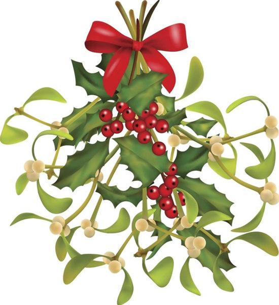 Mistletoe and holly Christmas
