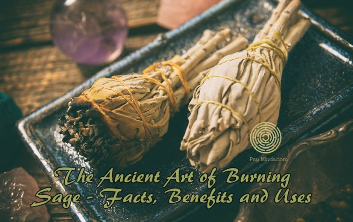The Ancient Art of Burning Sage - Facts, Benefits and Uses