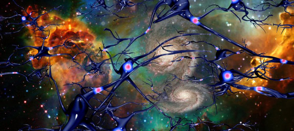 The Concept Of Time and Space cells