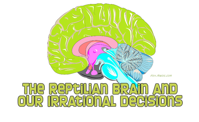 The Reptilian Brain and Our Irrational Decisions